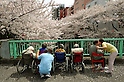 April 10, 2012, Tokyo, Japan - A group of wheelchair-bound elderly people accompanied by careworkers takes to the bridge over Kanda River, viewing cherry blossoms in full bloom in Tokyo on Tuesday, April 10, 2012. (Photo by Natsuki Sakai/AFLO) AYF -mis-