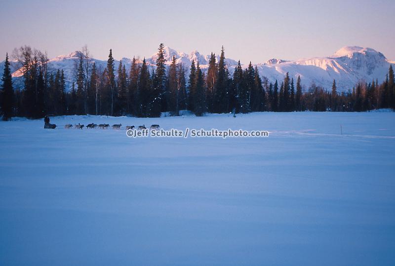D.Swingley mushing at sunrise near Finger Lake/ Iditarod '96