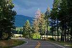 Deserted rural road near Flathead Lake, Montana