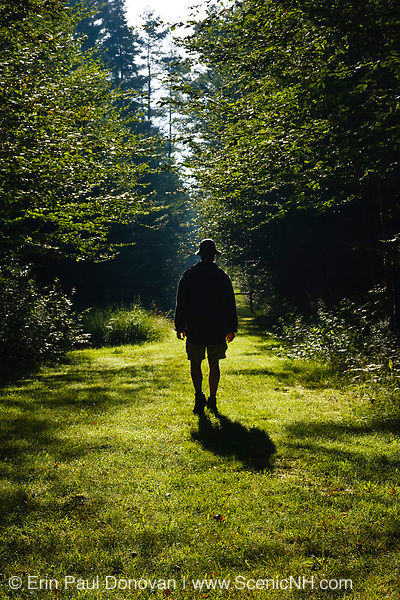 Silhouette of a man walking down path at Bretzfelder Memorial Park in Bethlehem, New Hampshire