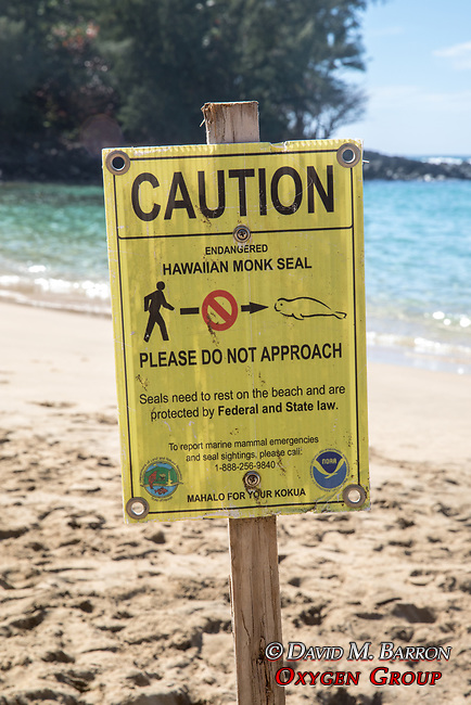 Monk Seal Caution Sign, Ke'e Beach