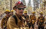 July 29, 2015--Big Creek fire- Los Angles County fire crew #16 work on put out big live oak tree near Bucktail Drive.  This was the North eastern edge of the fire.  Big Creek Fire was a 204 acre fire on Big Creek Shaft road near Groveland.    Photo by Al Golub/Golub Photography