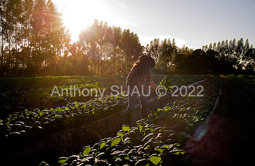 Punta Gorda, Florida<br />
