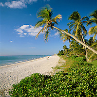 USA, Florida, Naples: Beach