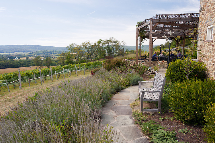 A path winds through gardens with scenic views, joining the patios at Hillsborough Vineyards.