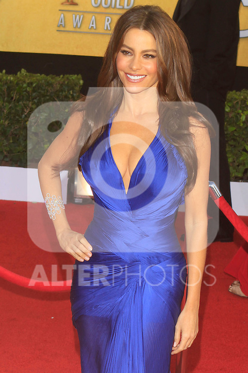 Actress Sofia Vergara arrives at the 17th Annual Screen Actors Guide Awards, Los Angeles, California, USA. 1/30/11. ..Photo: Santiago Irigoyen / ALFAQUI