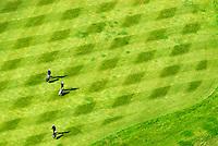 Golf: EUROPA, DEUTSCHLAND, SCHLESWIG- HOLSTEIN, OSTSTEINBEK, (GERMANY), 19.09.2007: drei Golfer , Personen, Golfplatz, Luftbild, Luftansicht, Aufwind-Luftbilder.. c o p y r i g h t : A U F W I N D - L U F T B I L D E R . de.G e r t r u d - B a e u m e r - S t i e g 1 0 2, 2 1 0 3 5 H a m b u r g , G e r m a n y P h o n e + 4 9 (0) 1 7 1 - 6 8 6 6 0 6 9 E m a i l H w e i 1 @ a o l . c o m w w w . a u f w i n d - l u f t b i l d e r . d e.K o n t o : P o s t b a n k H a m b u r g .B l z : 2 0 0 1 0 0 2 0  K o n t o : 5 8 3 6 5 7 2 0 9.C o p y r i g h t n u r f u e r j o u r n a l i s t i s c h Z w e c k e, keine P e r s o e n l i c h ke i t s r e c h t e v o r h a n d e n, V e r o e f f e n t l i c h u n g n u r m i t H o n o r a r n a c h M F M, N a m e n s n e n n u n g u n d B e l e g e x e m p l a r !.
