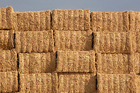 Bales of rape straw<br /> &copy;Tim Scrivener Photographer 07850 303986<br />      ....Covering Agriculture In The UK....