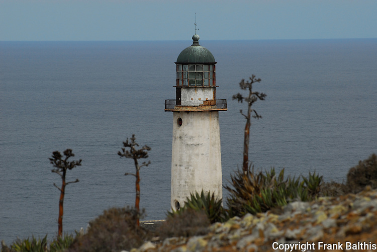 Agave and Lighthouse on West San Benitos Island