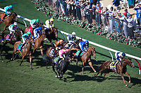 DEL MAR, CA - NOVEMBER 04: The field led by Zipessa #4, ridden by Joe Bravo, during the Breeders' Cup Filly & Mare Turf on Day 2 of the 2017 Breeders' Cup World Championships at Del Mar Thoroughbred Club on November 4, 2017 in Del Mar, California. (Photo by Ting Shen/Eclipse Sportswire/Breeders Cup)