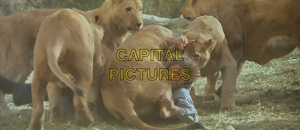 SCENE<br /> in Roar (2014) <br /> (ROAR: Tigers of the Sundarbans)<br /> *Filmstill - Editorial Use Only*<br /> CAP/NFS<br /> Image supplied by Capital Pictures