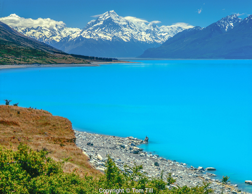 Mt. Cook and glacial lake waters, Mt. Cook National Park, New ZEaland Lake Pukaki South ISland Southern Alps