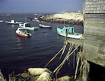 Fishing boats at Indian Harbour, Nova Scotia<br />