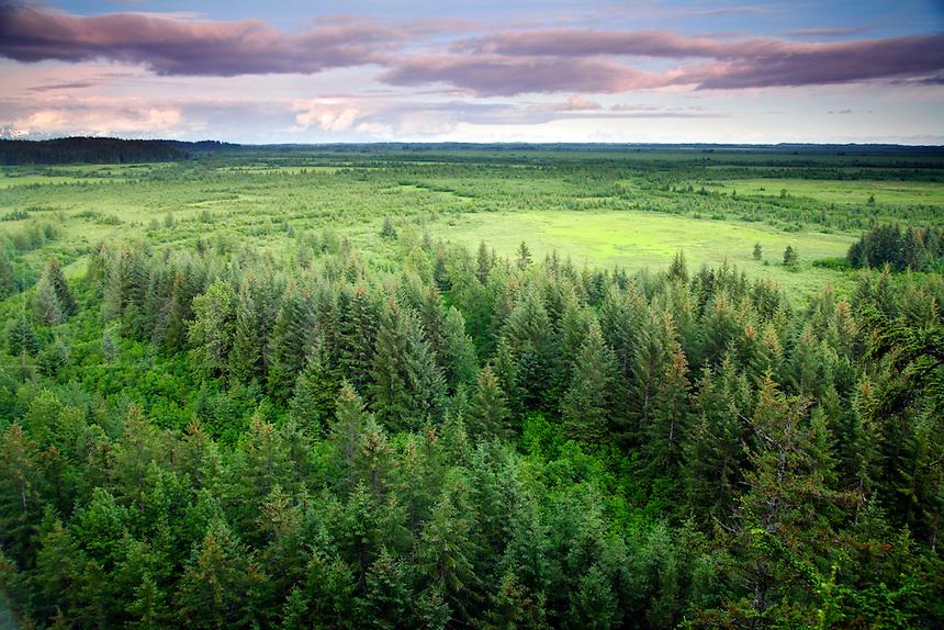 Chugach National Forest, Alaska, Forest Service, Cordova, Copper River Delta