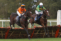 Dear Maurice (7) ridden by Trevor Whelan (L) and Space Telescope (3) ridden by A P McCoy jump the last in the Firmstones Recycled Aggregate Handicap Hurdle
