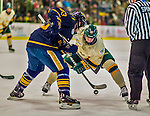 29 December 2013:  University of Vermont Catamount Forward Mike Stenerson, a Freshman from Surrey, British Columbia, takes a second period face-off against the Canisius College Golden Griffins at Gutterson Fieldhouse in Burlington, Vermont. The Catamounts defeated the Golden Griffins 6-2 in the 2013 Sheraton/TD Bank Catamount Cup NCAA Hockey Tournament. Mandatory Credit: Ed Wolfstein Photo *** RAW (NEF) Image File Available ***