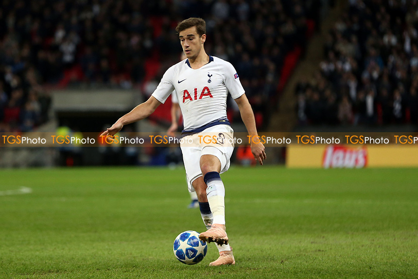 Harry Winks of Tottenham Hotspur during Tottenham Hotspur vs PSV Eindhoven, UEFA Champions League Football at Wembley Stadium on 6th November 2018