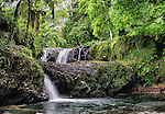 This waterfall and pool is in O le Pupu Pue National Park in Upulo, Western Samoa.