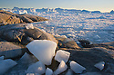 Ice pieces on rocky shore, fiord covered with small drifting ice pieces and large icebergs in background, midnight, summer; Disko Bay, Greenland