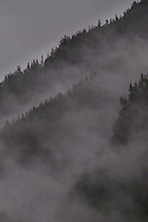 Fog on Peaks, North Cascades National Park, Washington, US
