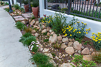 Rock lined streetside sidewalk rain and storm water capture rain garden for percolation in summer-dry garden; design Urban Water Group, Los Angeles