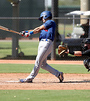 Connor Wong - 2017 AIL Dodgers (Bill Mitchell)