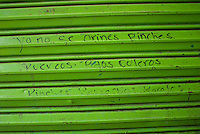 Grafitti at the Mercado De Sonora, Mexico City, May 24, 2007 This market, found in the heart of Mexico City is one of a kind, it specializes in spells, magic, different religious icons, santeria, etc to cure you, help you, improve you, etc.