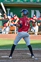 Angelo Castellano (13) of the Idaho Falls Chukars at bat against the Ogden Raptors in Pioneer League action at Lindquist Field on June 28, 2016 in Ogden, Utah. The Raptors defeated the Chukars 12-11. (Stephen Smith/Four Seam Images)