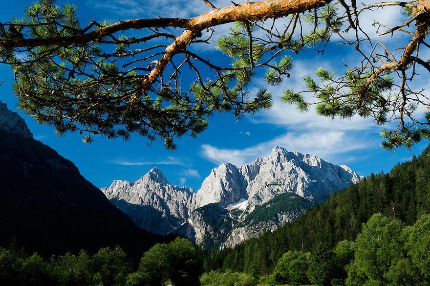 Mount Prisojnik and Mount Razor<br /> view from Kranjska Gora<br /> Julian Alps<br /> Triglav National Park, Slovenia<br /> July 2009