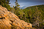 The rocky coast of Downeast Maine, seen from the Ocean Path in Acadia National Park, ME, USA