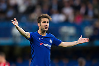 Chelsea's Cesc Fabregas reacts <br /> <br /> Photographer Craig Mercer/CameraSport<br /> <br /> The Premier League - Chelsea v Huddersfield Town - Wednesday 9th May 2018 - Stamford Bridge - London<br /> <br /> World Copyright &copy; 2018 CameraSport. All rights reserved. 43 Linden Ave. Countesthorpe. Leicester. England. LE8 5PG - Tel: +44 (0) 116 277 4147 - admin@camerasport.com - www.camerasport.com