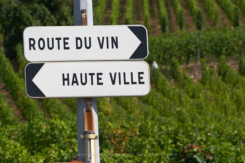 road sign vineyard ribeauville alsace france