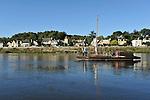Paysage de Loire : Le Thoureil (Maine-et-Loire)