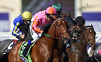 DEL MAR, CA - NOVEMBER 04: Caledonia Road #12, ridden by Mike Smith breaks down the stretch during the 14 Hands Winery Breeders' Cup race on Day 2 of the 2017 Breeders' Cup World Championships at Del Mar Racing Club on November 4, 2017 in Del Mar, California. (Photo by John Durr/Eclipse Sportswire/Breeders Cup)