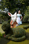 Agrumi 'We are mad here!'  Garden Celebrates 150 years since Lewis Carroll's  Alice's adventures in Wonderland was first published<br /> at the RHS Hampton Court Flower show. <br /> <br /> Bethany Clarke / RHS