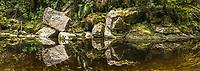 Limestone rocks reflecting in Oparara River near Karamea, Kahurangi National Park, Buller Region, West Coast, New Zealand, NZ