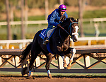 OCT 27: Honor AP works at Santa Anita Park in Arcadia, California on Oct 27, 2019. Evers/Eclipse Sportswire/Breeders' Cup