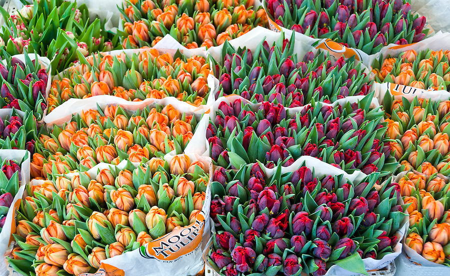 VIENNA, AUSTRIA - MARCH 8TH: View of tulips in a stand at the street market of Vienna, taken March 8th 2011. This is a very popular tourist attraction in Europe.