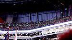 ATLANTA, GEORGIA - DECEMBER 08: Portland Timbers fans. Atlanta United FC and the Portland Timbers played on December 8, 2018, at Mercedes Benz Stadium in Atlanta, Georgia in MLS Cup 2018. Atlanta United won the championship final 2-0.