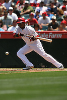 05/06/12 Anaheim, CA: Los Angeles Angels shortstop Erick Aybar #2 during an MLB game against the Toronto Blue Jays played at Angel stadium. The Angels defeated the Blue Jays 4-3