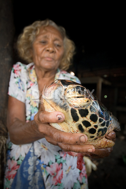 "An old woman holds a green turtle head (Chelonia mydas) which she butchered in preparation for ""Queen Victoria's"" funeral feast."
