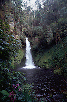 A waterfall in a lush tropical landscape. Ambua, Papua New Guinea.