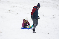 Pictured: A young girl sledges in the snow at Libanus, in Brecon, Wales, UK. Friday 01 February 2019<br /> Re: Heavy snow and freezing temperatures affecting parts of the UK.