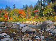 Autumn colors along the Swift River, near the Kancamagus Highway (route 112), in the White Mountain National Forest of New Hampshire USA.