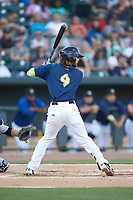 Gene Cone (9) of the Columbia Fireflies at bat against the Charleston RiverDogs at Spirit Communications Park on June 9, 2017 in Columbia, South Carolina.  The Fireflies defeated the RiverDogs 3-1.  (Brian Westerholt/Four Seam Images)