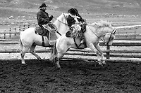 A photo of wranglers working out a bucking horse in spring. Cowboys and cowgirls living the western lifestyle.