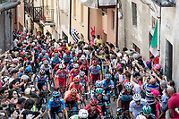 peloton up the steep, cobbled & crowded climb in Pinerolo for the 1st passage<br /> <br /> Stage 12: Cuneo to Pinerolo (158km)<br /> 102nd Giro d'Italia 2019<br /> <br /> ©kramon