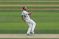 Jamie Porter of Essex celebrates taking the wicket of Kraigg Braithwaite during Nottinghamshire CCC vs Essex CCC, Specsavers County Championship Division 1 Cricket at Trent Bridge on 10th September 2018
