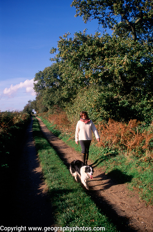 A3A7X2 Woman and collie dog country lane walk Suffolk England