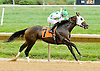 Expecting Money winning at Delaware Park on 10/3/12